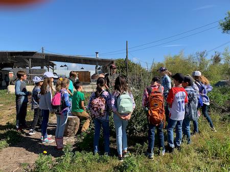 4th Graders Visit Farm