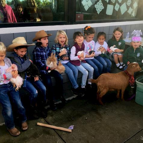 Farm Animals Visit St. Pats