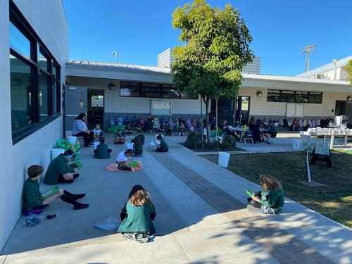 Outdoor Learning at St. Pat's
